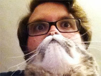 Katzenbärte - So geht es!