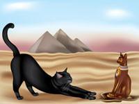 Göttliche Katzen, samtpfotige Streuner