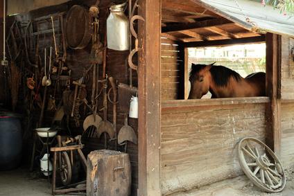 Frühjahrsputz im Pferdestall